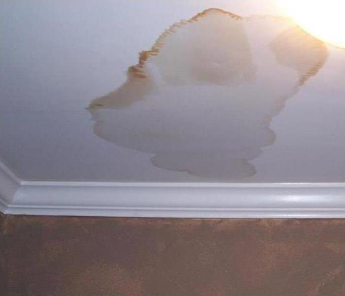 Water Damage Repair In Bexley