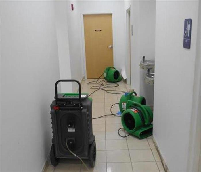 Bexley Water Damage to a Building