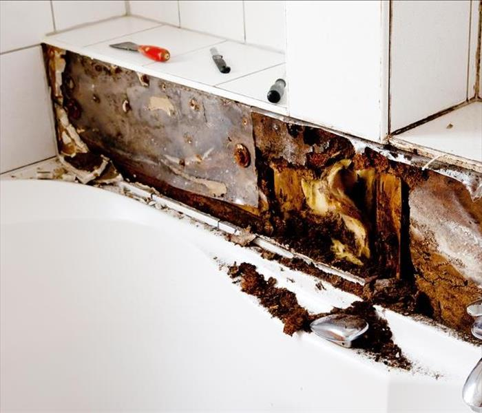 Mold Remediation When Homes Develop Mold, Damage can Spread Quickly